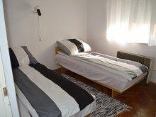 Cazare Ungaria, Apartament Alexa
