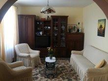 Accommodation Boroșneu Mic, Jánosi Guesthouse