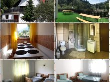 Accommodation Lepșa, REI House