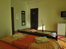 Accommodation Felcheriu, Anca B&B