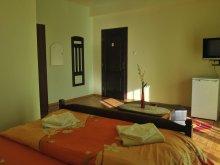 Accommodation Săldăbagiu de Munte, Tichet de vacanță, Anca B&B