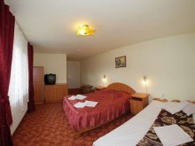 Accommodation Hălmăsău, Iedera B&B