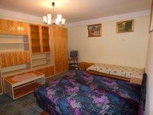 Cazare Zamárdi, Apartament Ágota 1