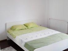 Accommodation Negrești, Ilinca Apartment