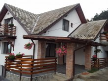 Vilă Băile Tușnad, Mitu House Residence