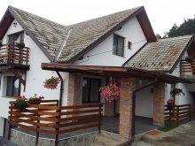 Villa Braşov county, Mitu House Residence
