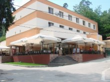 Hotel Mermești, Hotel Termal
