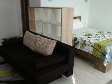 Accommodation Brebeni, Central Residence Apartment
