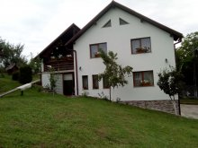Accommodation Valea Vinului, Chindris B&B