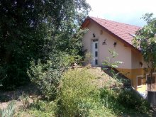Casă de oaspeți Balatonaliga, Casa de vacanță Panorama