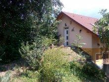 Casă de oaspeți Balatonszemes, Casa de vacanță Panorama