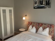 Accommodation Sebeșu de Sus, Carmen Apartment