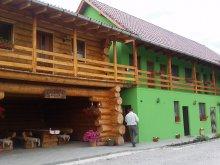 Accommodation Zetea, Erdészlak Guesthouse