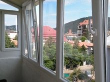 Accommodation Dumbrava Roșie, Julia Apartment
