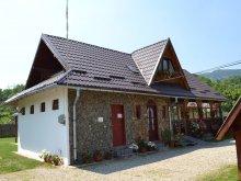 Accommodation Capu Piscului (Godeni), Micutul Vrajitor B&B