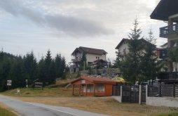 Nyaraló Szeben (Sibiu) megye, Two Brothers Concept Vendégház