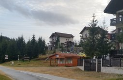 Vacation home Sibiu county, The Brothers Concept Guesthouse