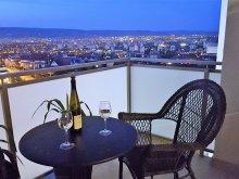 Cazare Toțești, Apartament Panorama View