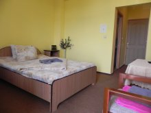 Accommodation Cristești, Casa Titan Villa