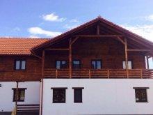 Accommodation Piatra Fântânele, Daniela B&B