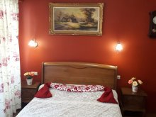 Accommodation Satu Nou (Urechești), Sissy Guesthouse