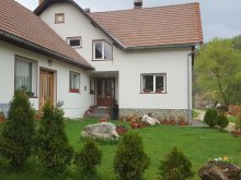Accommodation Braşov county, Ioana Chalet