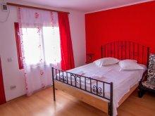 Accommodation Dealu Doștatului, Tichet de vacanță, Doriana Villa