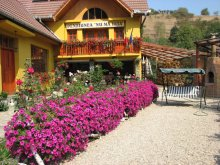 Accommodation Ocna Sibiului, Nu Mă Uita Guesthouse