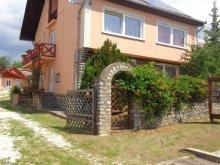 Case de oaspeți Travelminit, Pensiunea Katica