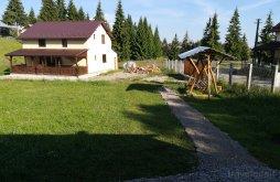 Cabană Beliș, Cabana Transilvania Belis