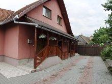 Accommodation Valea Borcutului, Gamma Guesthouse
