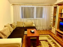 Accommodation Galița, Daiana Apartment