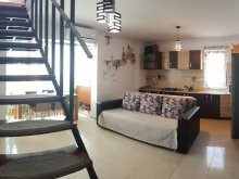 Accommodation Negrești, Penthouse 3 Apartment
