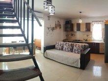 Cazare Techirghiol, Apartament Penthouse 3