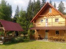 Accommodation Tomușești, Aurora Chalet