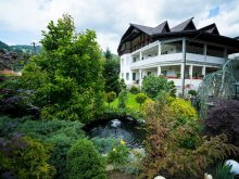 Accommodation Bistrița, Casa Mona Guesthouse