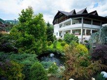 Accommodation Valea Borcutului, Casa Mona Guesthouse