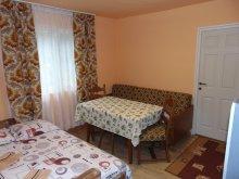 Cazare Suseni, Apartament Salina