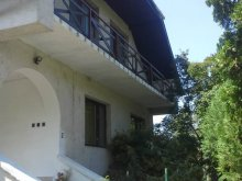 Cazare Lacul Balaton, Orsolya Apartman (parter)