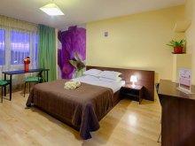 Accommodation Stâlpu, Sala Palatului Apartment