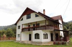 Panzió Cotârgași, Casa Matei Panzió