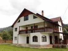 Pensiune Bârgăuani, Casa Matei