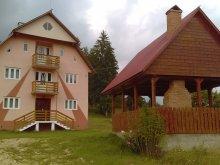 Panzió Pleșcuța, Poarta lui Ionele Panzió