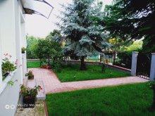 Accommodation Balatonkenese, PE-KI Apartment