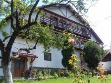 Accommodation Bădeni, Casa Albă Guesthouse