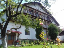 Accommodation Viștișoara, Casa Albă Guesthouse
