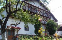 Hotel Șimon, Casa Albă Guesthouse