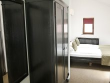 Accommodation Ciungetu, Sibiu City Center Apartments