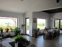 Accommodation Gura Cornei, Maris B&B