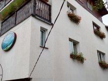 Accommodation Cetățeni, Dor de călător Villa